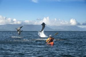 Punta Arenas_Faro San Isidro2